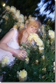 me roses
