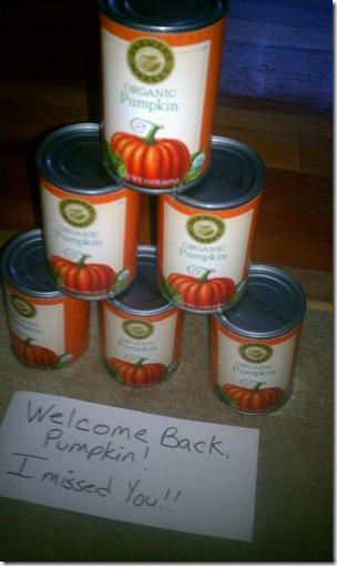 pumpkin welcome home